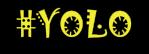 yolo-icon