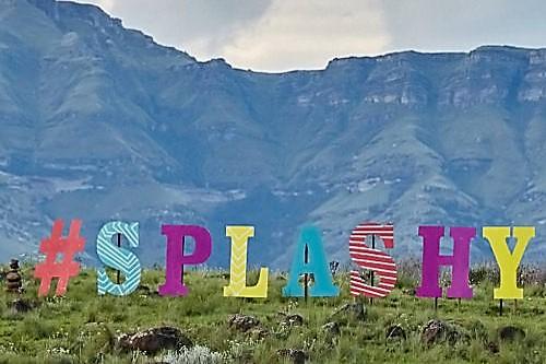 Splashy Fen festival Poster